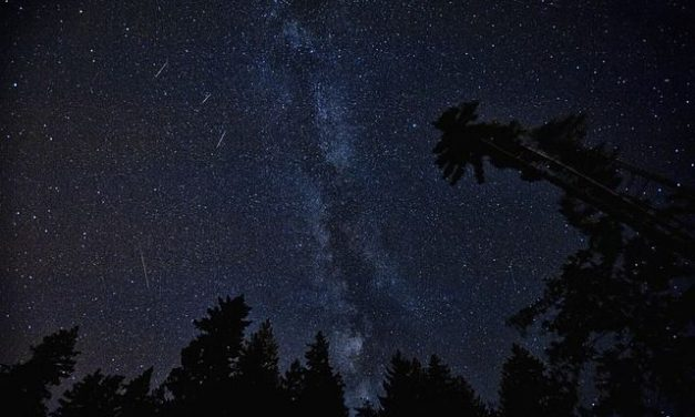 Perseides: pluja d'estels d'estiu