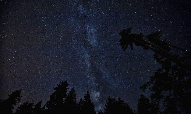 Perseidas: lluvia de estrellas de verano